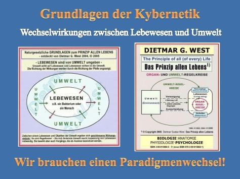 Grundlagen der Kybernetik 2