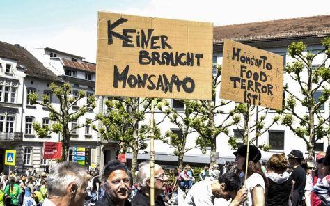 Monsanto shutterstock_195022793