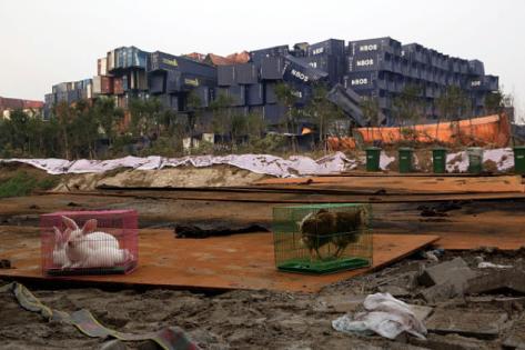 Tianjin-Terro