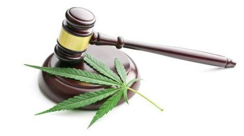 Australien Canabis Legaliseirung